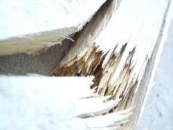 Piece of Broken Wood
