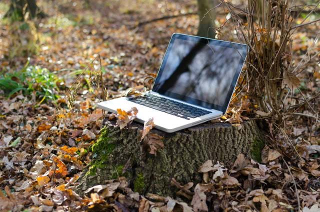 Laptop sitting on a stump in the woods